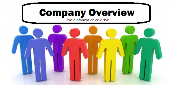 company overview ansb_2